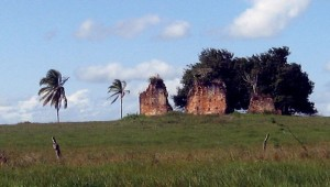 Igreja Velha_pastagem e ruínas3